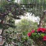 Địa chỉ lắp đặt cáp tăng đơ cầu thang uy tín tại Nam Định