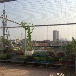Lưới ban công rẻ đẹp Hòa Phát tại quận Bắc Từ Liêm